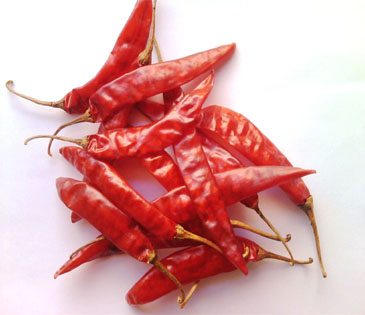 Sannam S4 OR 334 Red Chili