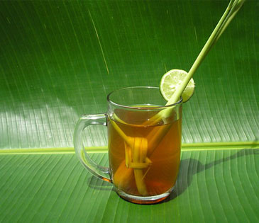Tea Cut Lemongrass